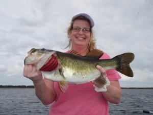 Central florida bass fishing lake toho thanks giving week for Lake kissimmee fishing report