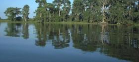 Lake Istokpoga