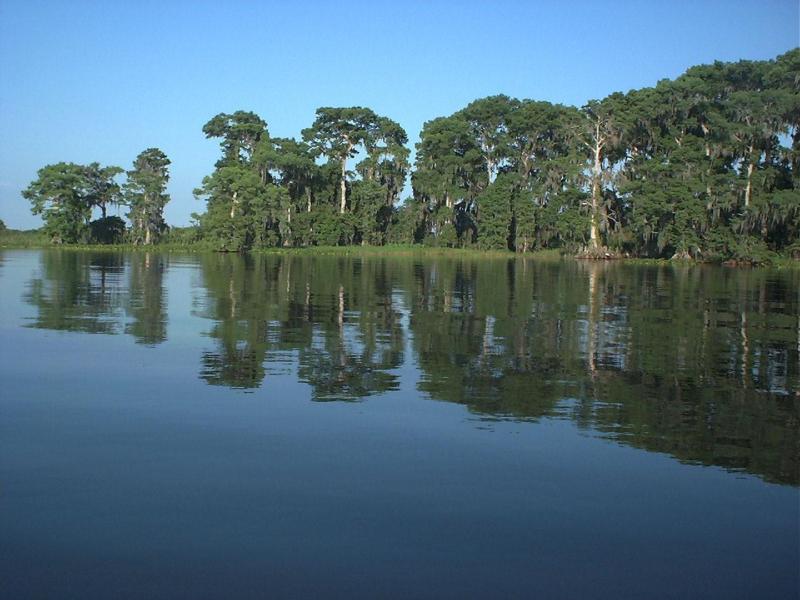 Lake Istokpoga Central Florida Bass Fishing